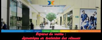 Atelier Shop Expert Valley : Espaces de vente, dynamique et évolution des réseaux