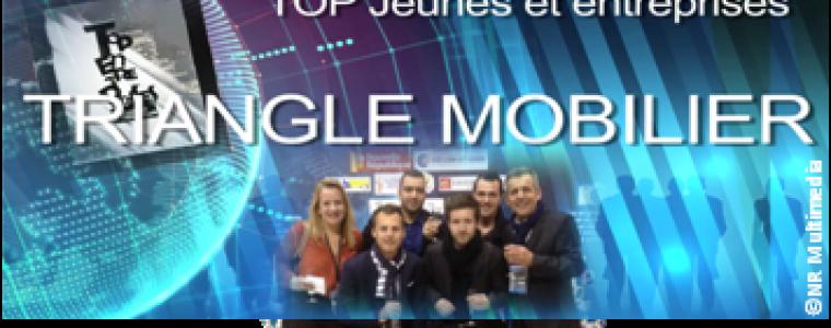 Actu Triangle Mobilier Top Jeunes et entreprises 2015